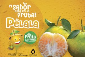 Banner CitriCaldas 02e FB