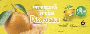 banner-citricaldas-04a-fb