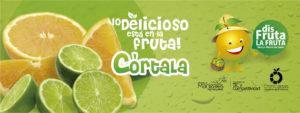 Banner CitriCaldas 09a FB