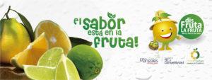 banner-citricaldas-10a