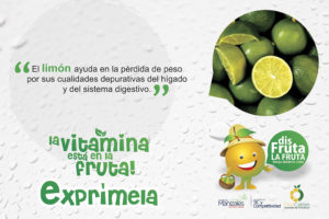 Tips Cítricos Vitamina C CitriCaldas 04