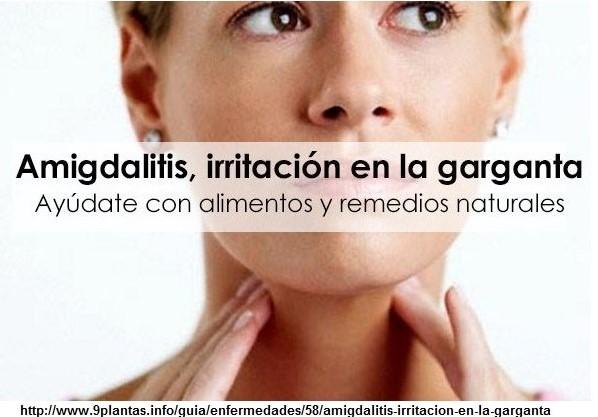 remedios para las amigdalas inflamadas